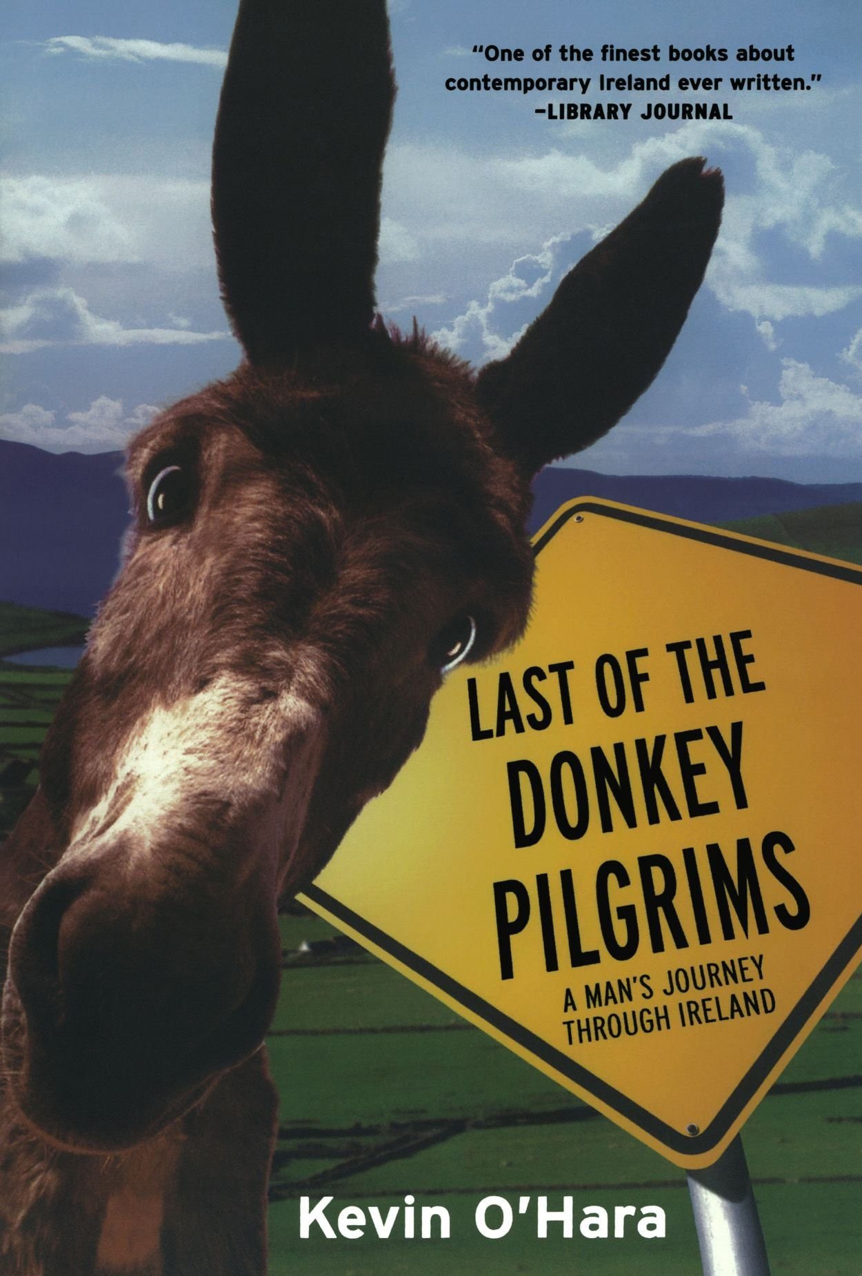 Last of the Donkey Pilgrims: A Man's Journey Through Ireland ebook