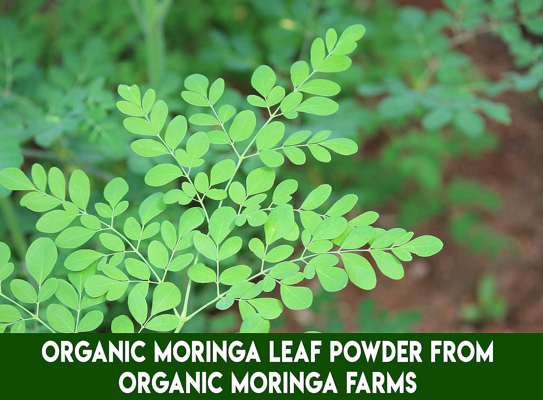 Grenera Organic Moringa Leaf Powder 8 5 Ounce - USDA, Kosher, Vegan  Ceritified Moringa Powder