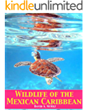 Wildlife of the Mexican Caribbean (English Edition)