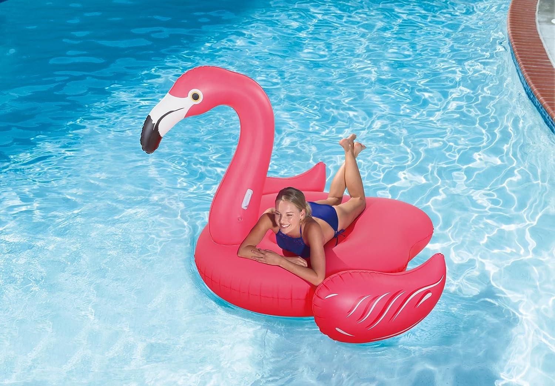 Amazon.com: Verano palmas gigante Flamenco Lounge flotador ...