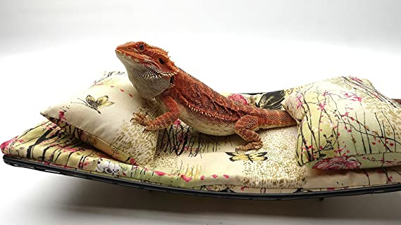 Review Chaise Lounge for Bearded Dragons, Asian Little Pink Flowers and Butterflies fabric