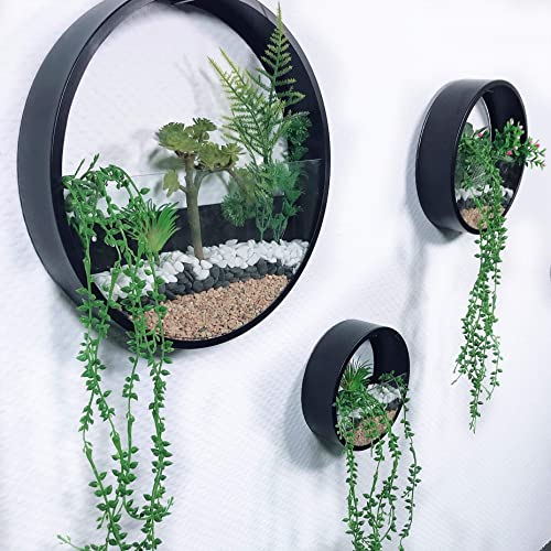 MYRU 3 Pieces Set Iron and Glass Wall Vase Planter for Flowers and Plants, Luxury Round Circle Hanging Flower Pots Wall Decor Home Decoration Black