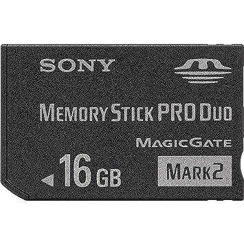 Sony MSMT16G Tarjeta de Memoria, 16 Gb, Negro