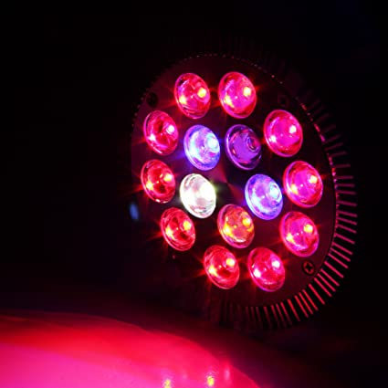 Xprite 15w Led Grow Light Bulb Red Blue White Ir Led Grow Lamps E26 E27 For Indoor Plants In Garden Greenhouse