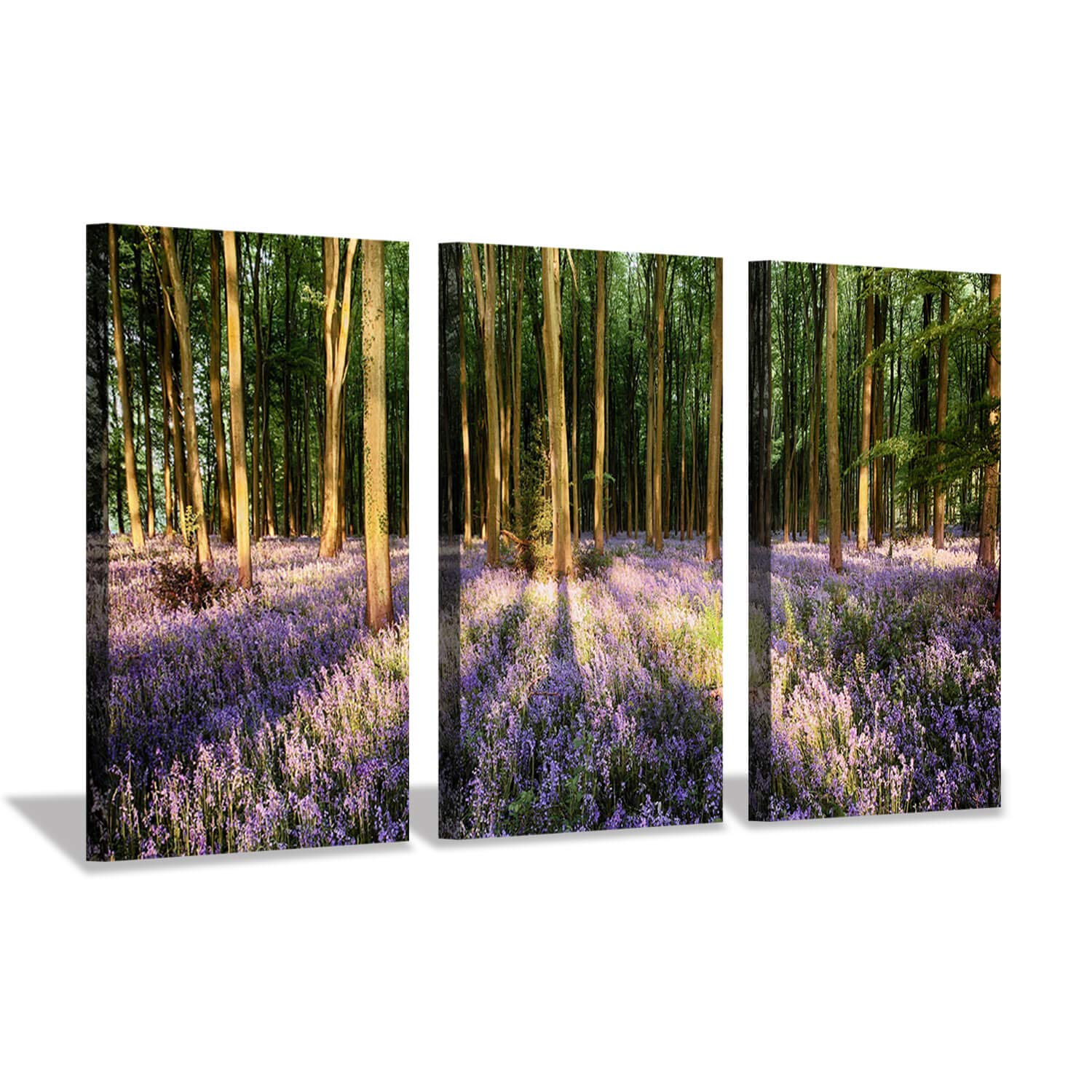 Hardy Gallery Natural Landscape Wall Art Painting Foggy Misty Forest Artwork Print On Canvas