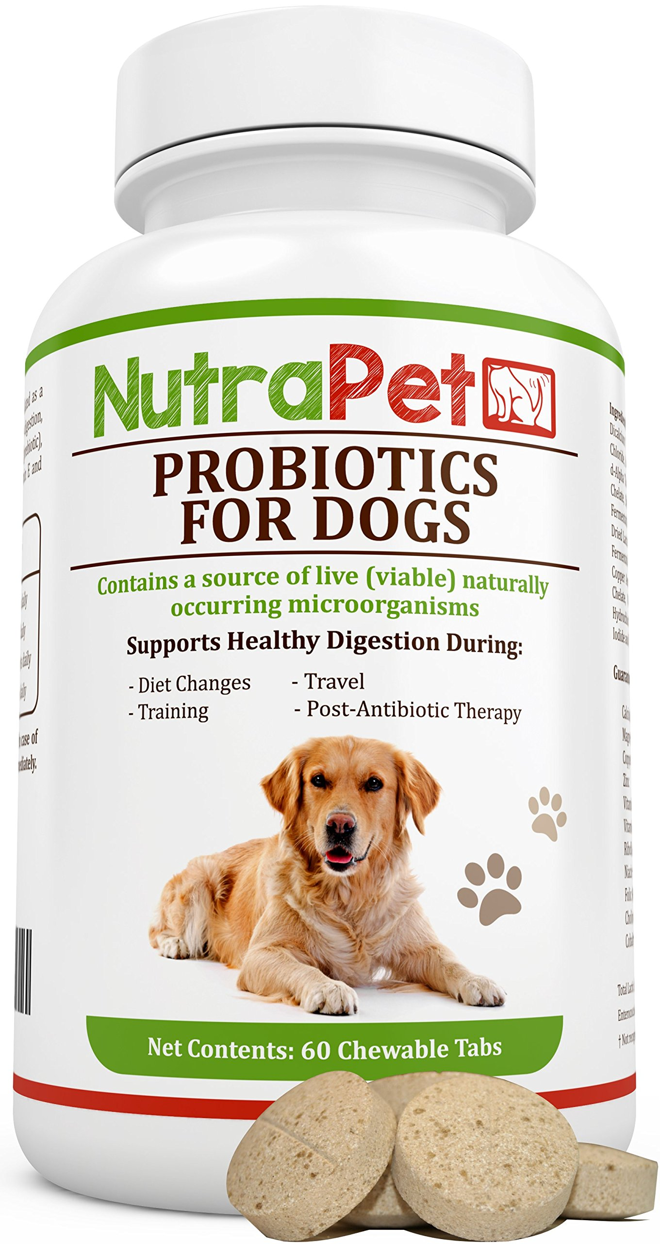 NutraPet Probiotics for Dogs Chewable, Digestive Health Supplement with Added Prebiotic, Vitamins and Minerals for an Active Lifestyle, 60 Tabs by NutraPet
