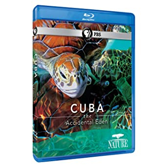 Amazon com: Cuba: The Accidental Eden [Blu-ray]:  , Doug Schultz