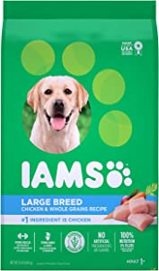 IAMS PROACTIVE HEALTH Adult High Protein Large Breed Dry Dog Food with Real Chicken, 15 lb. Bag