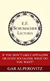 If You Don't Like Capitalism or State Socialism, What Do You Want? (Annual E. F. Schumacher Lectures Book 31)
