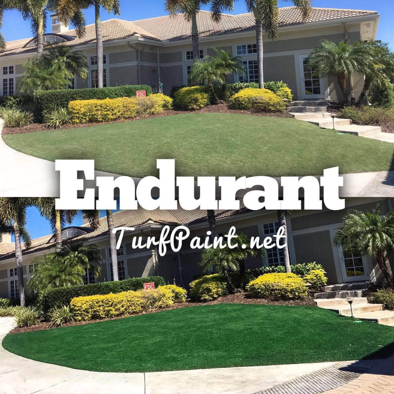 Concentrated Turf and Grass Colorant - 1 Gallon Jug Revitalizes Approximately 10,000 Sq. Ft of Dormant, Drought-Stricken or Patchy Lawn (Premium) by   Endurant (Image #2)
