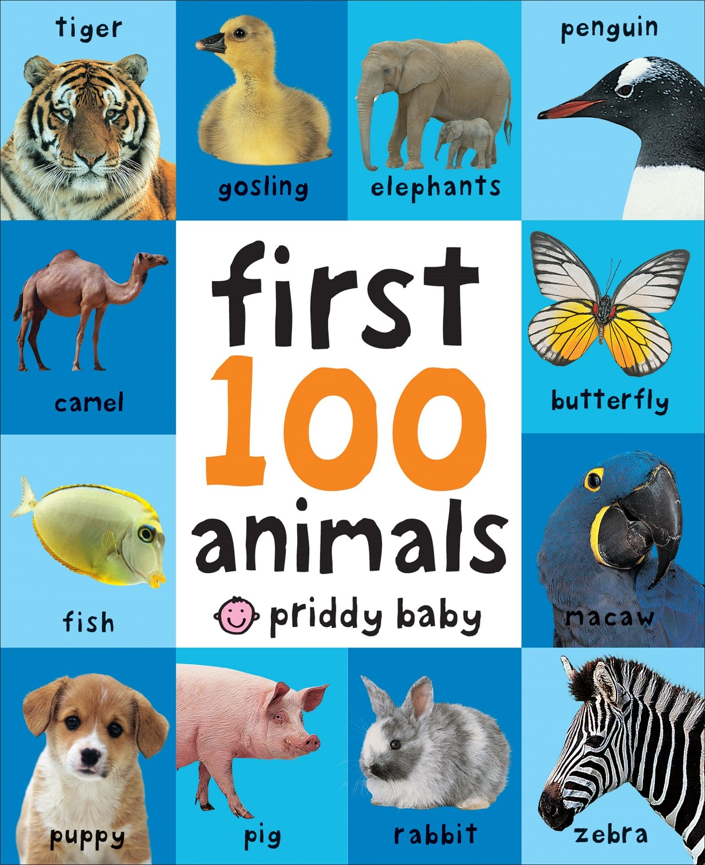Toddler Learning Book First 100 Animals Board Child Toy Early Baby