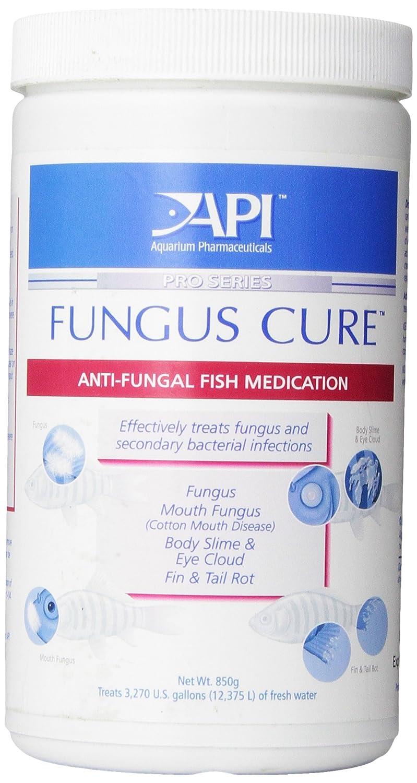 API Fungus Cure Powder, 850-Gram Bulk Jar