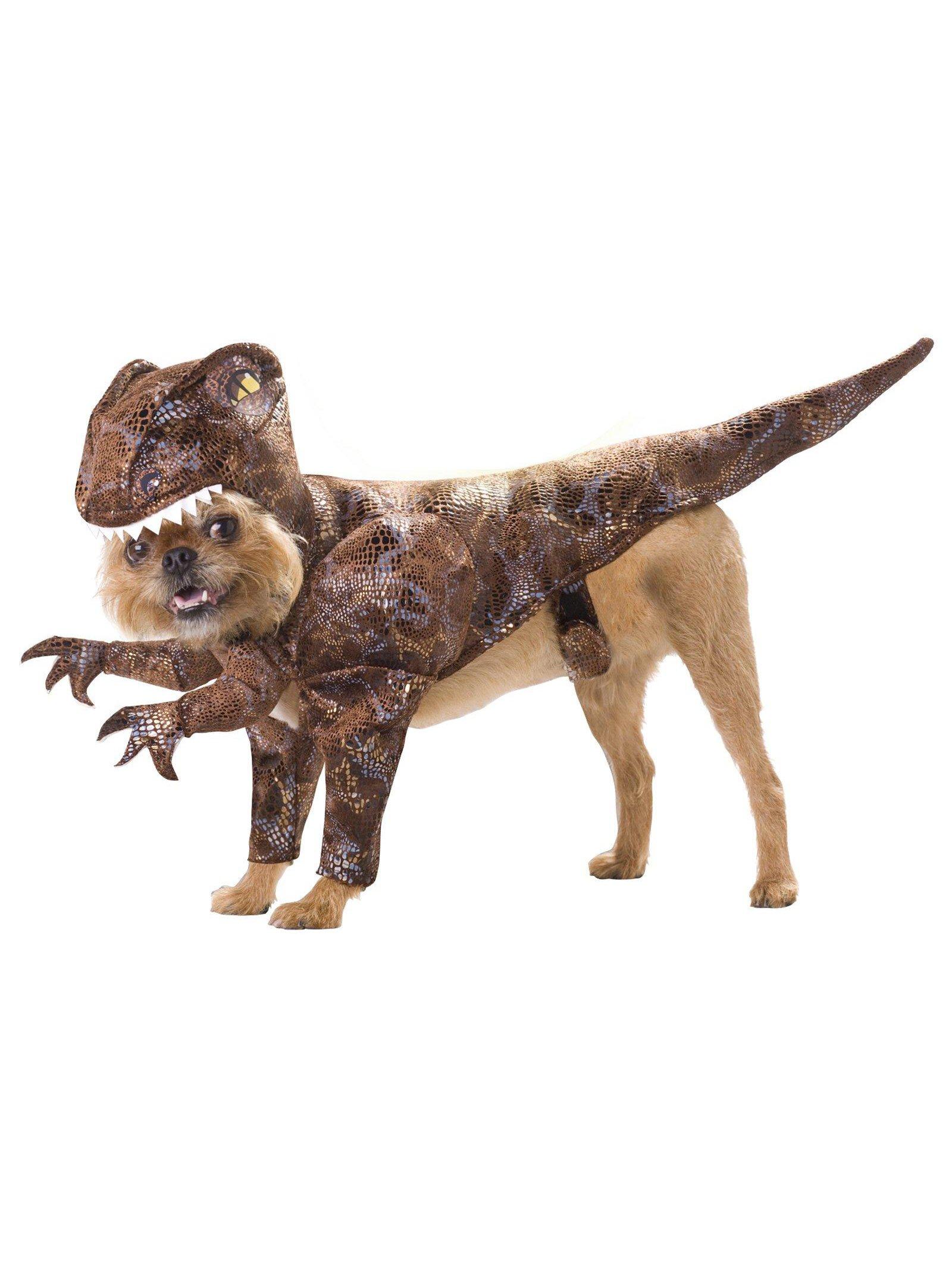 Animal Planet PET20109 Raptor Dog Costume, Small