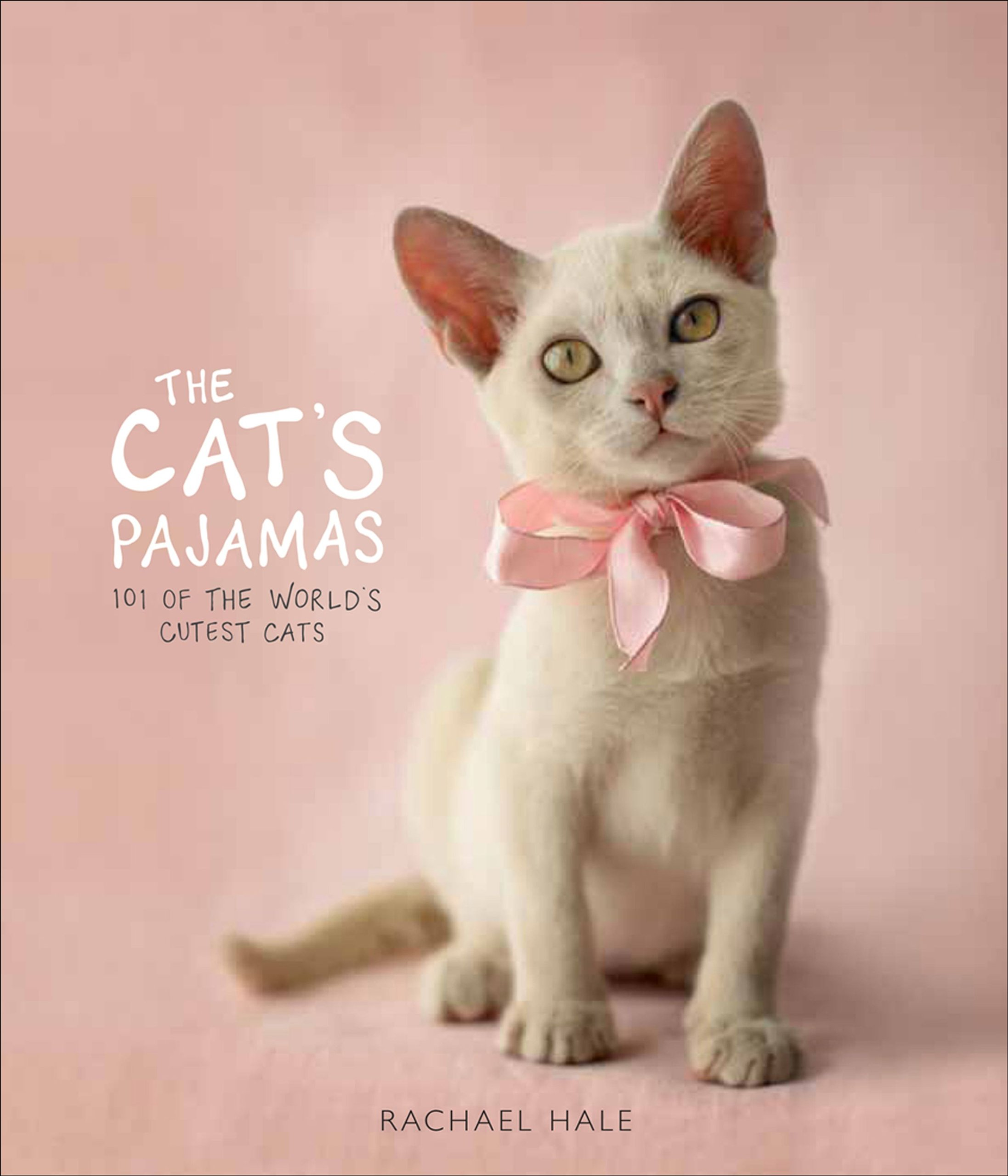 the cat s pajamas 101 of the world s cutest cats rachael hale