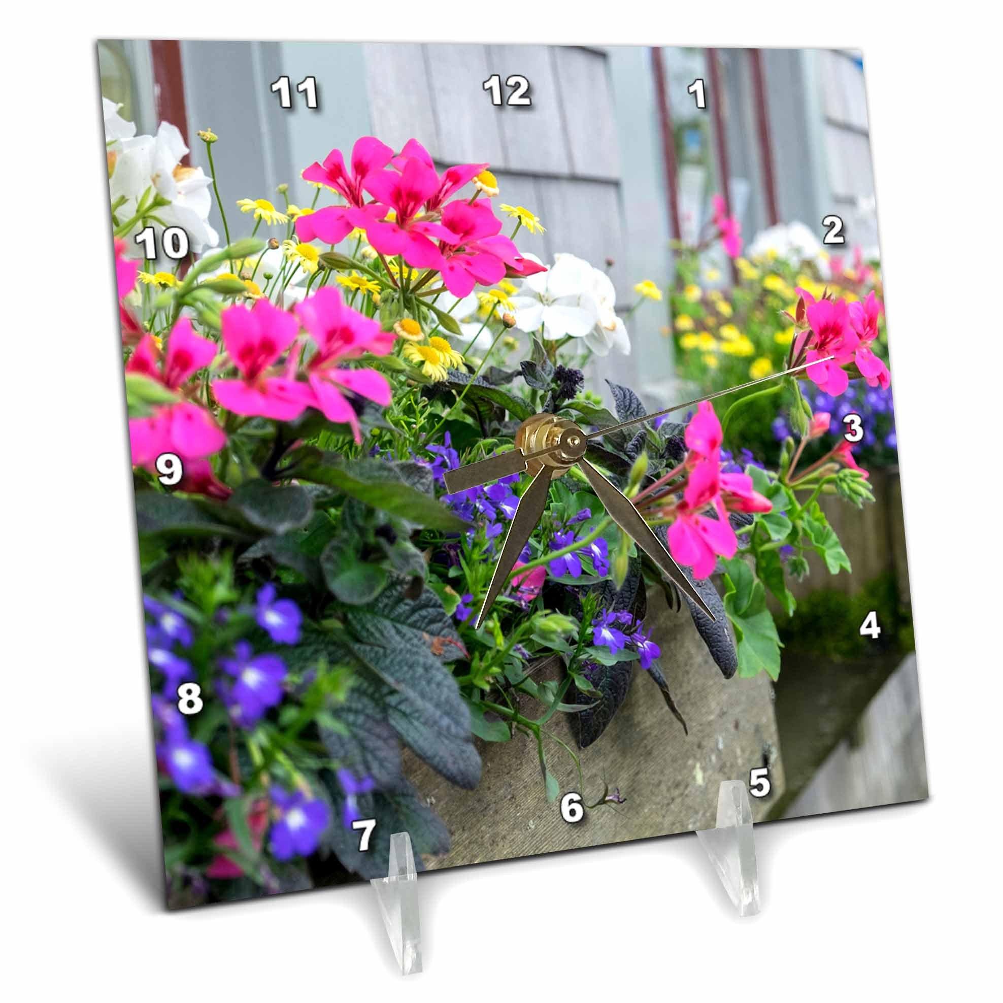 3dRose Danita Delimont - Flowers - Flowers in window boxes, Nantucket, Massachusetts, USA - 6x6 Desk Clock (dc_279042_1)