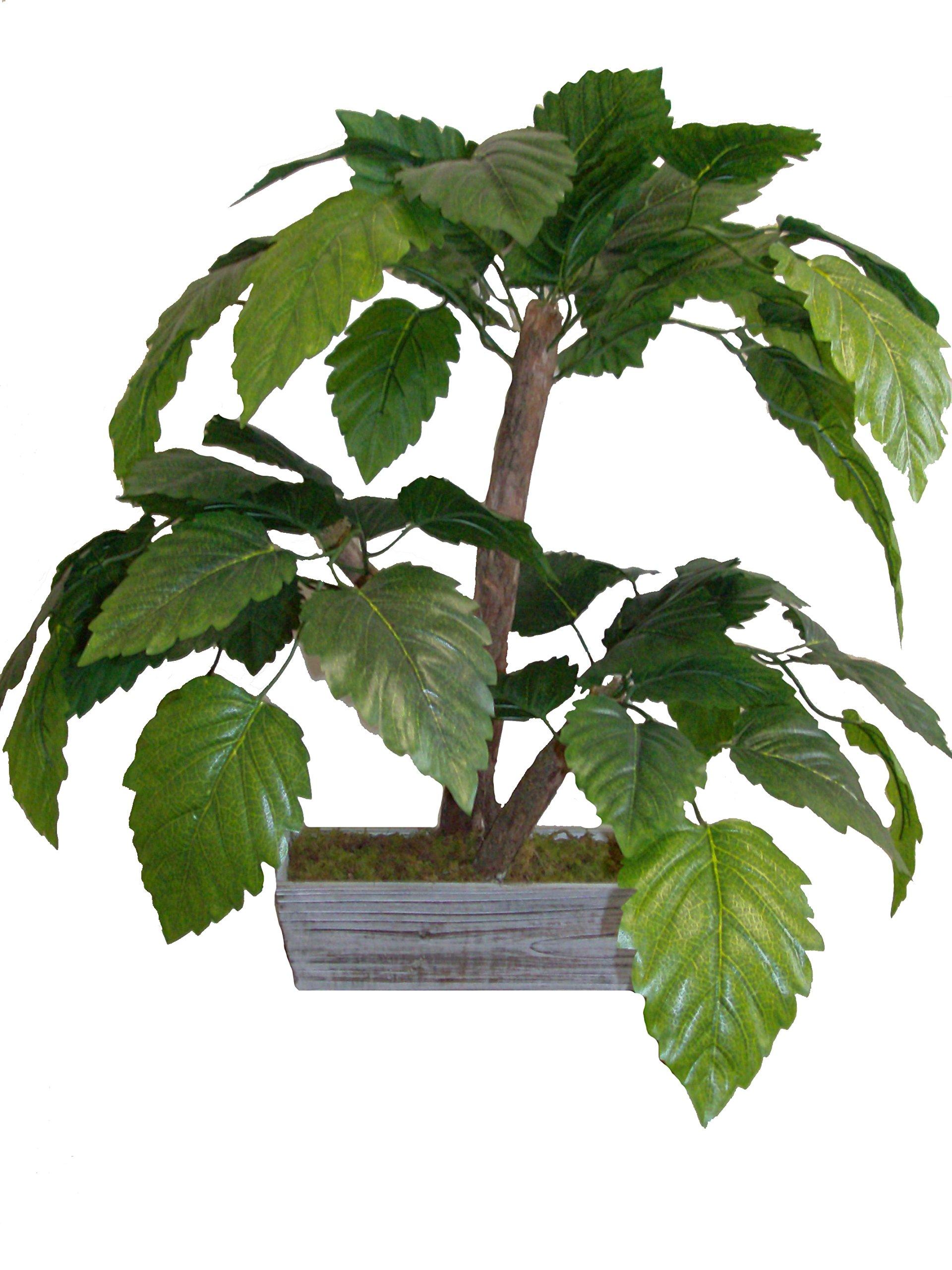 Mamone Home & Garden Mini H Baiyun Leaf Tree in Wood Planter, 28''