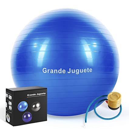 Grande Juguete Exercise Stability Yoga Ball(45-65CM) Support 2000lbs with Quick Foot Pump-Extra Thick & Professional Balance Ball Grade Anti Burst,No ...