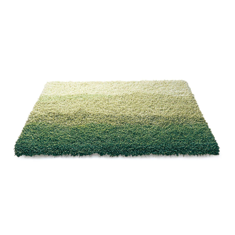 [ベルメゾン] ミックス シャギー 玄関 マット 日本製 グリーン サイズ(cm):約70×120 B0771KTRWG グリーン サイズ(cm):約70×120