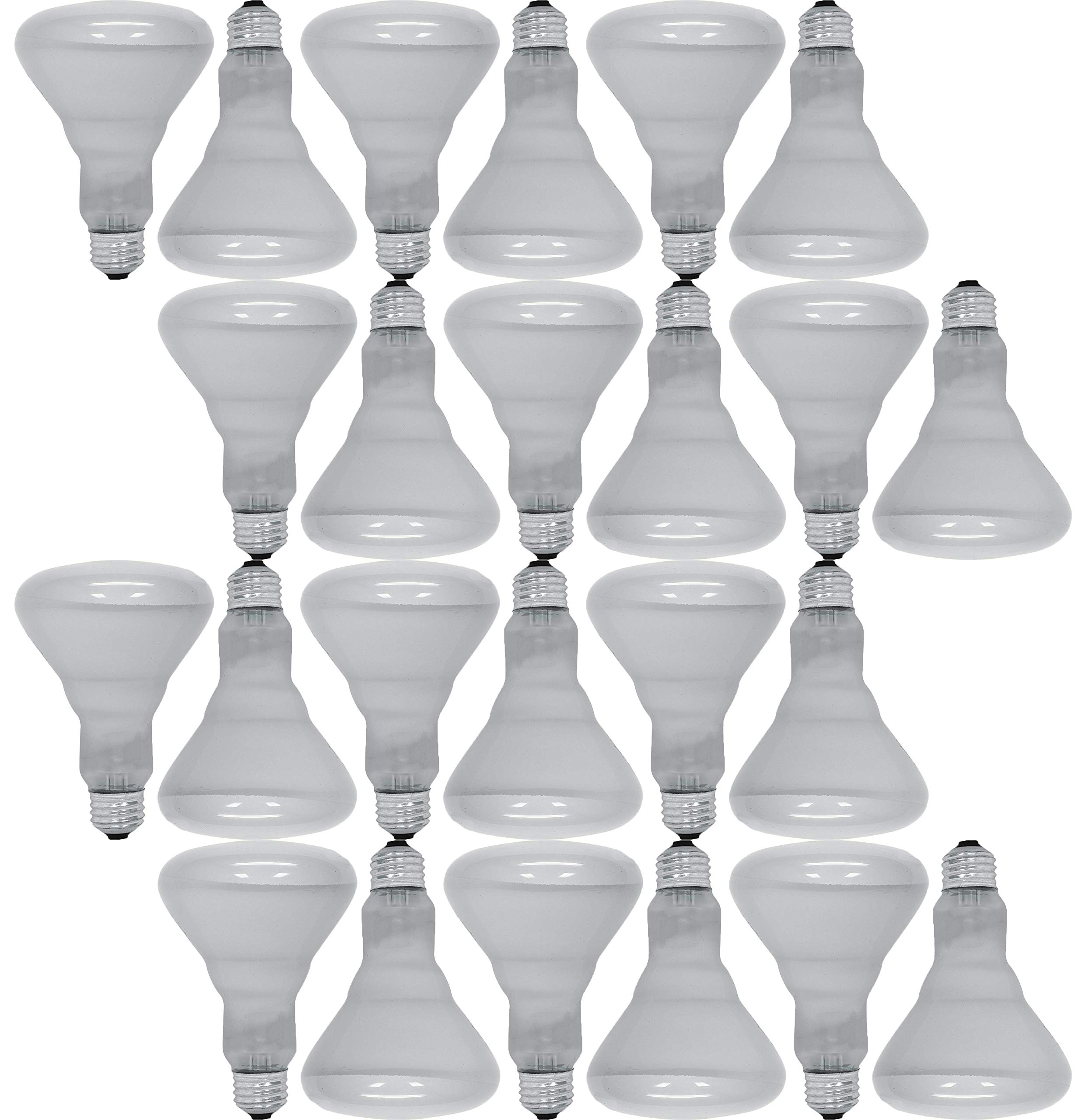 GE Lighting 65 Watt 580 Lumens Soft White Reflector Floodlight BR30 Light Bulb (24 Bulbs)