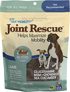 product image for Ark Naturals Sea Mobility Lamb Jerky For Dogs, 9-Ounce Pouches (Pack Of 2)
