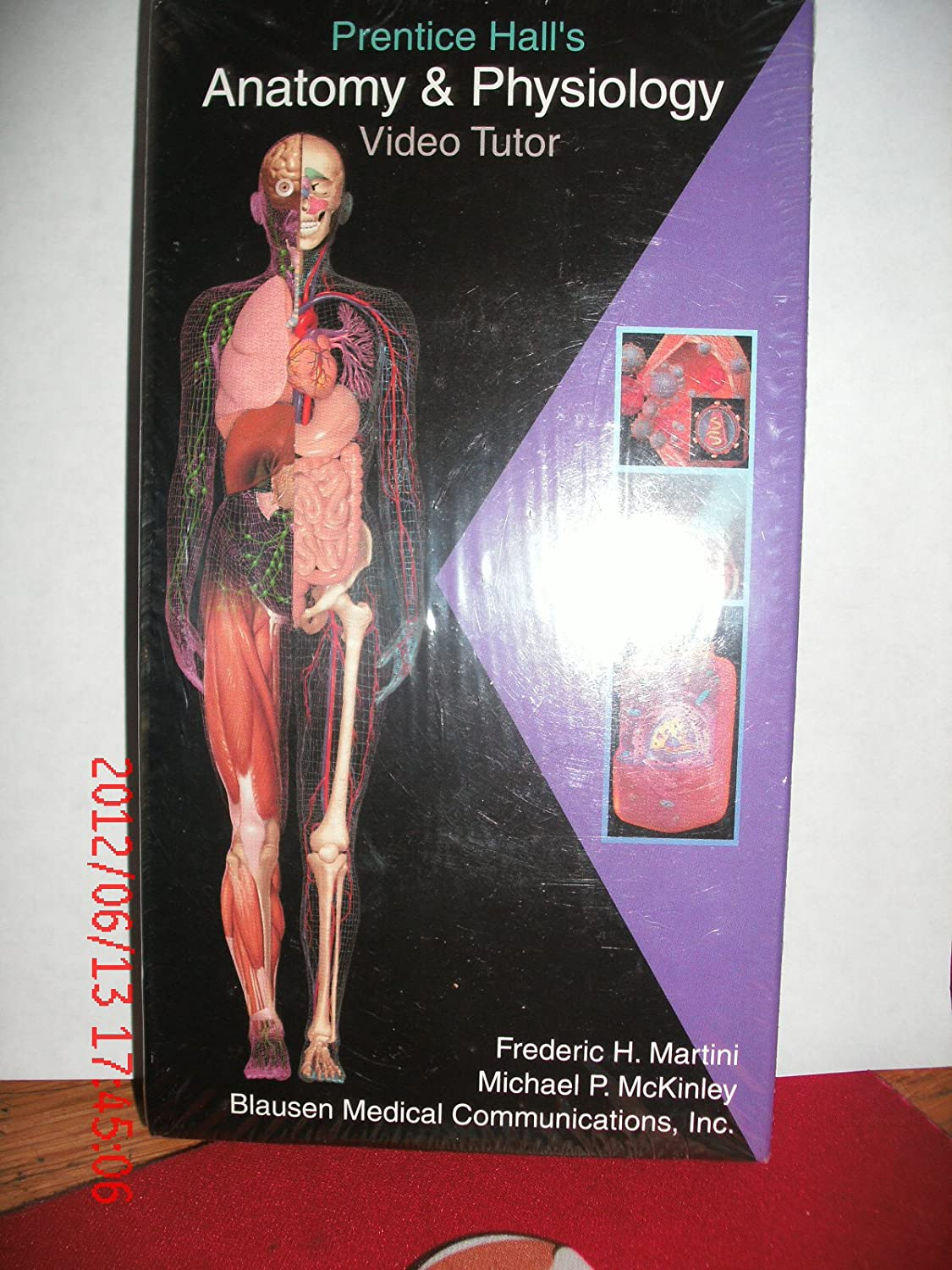 Amazon.com: Fundamentals of Anatomy and Physiology [VHS]: Frederic ...