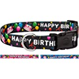 Country Brook Petz Deluxe Dog Collar - Party Animal Collection