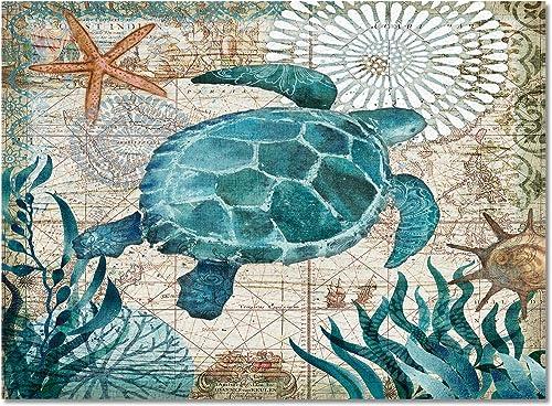 T H XHome Indoor Comfort Area Rug,Sea Turtle Ocean Animal Nautical Map Durable Non-Slip Rectangle Floor Mats Living Room Carpet Bedroom Rugs