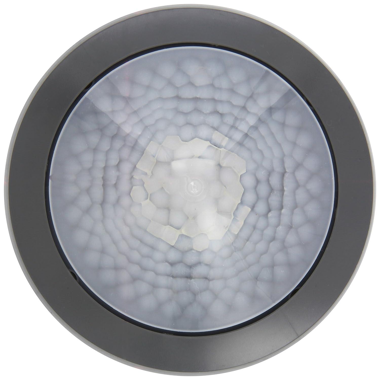 Theben Ronda P360-101 UP GR Detector de Presencia para Montaje en Techo, Control, iluminación HKL, 2080006: Amazon.es: Bricolaje y herramientas
