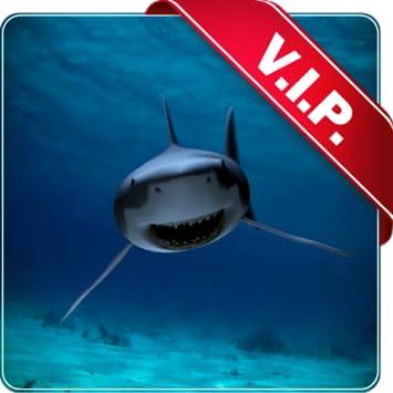 Killer Shark Live Wallpaper