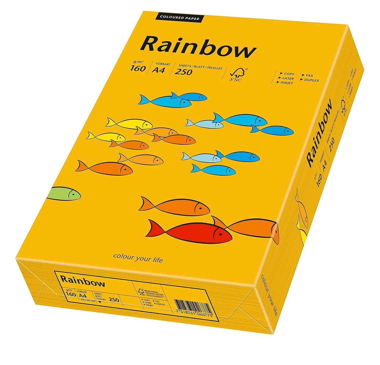 Papyrus 88042417 - Carta Rainbow, 160 g/m², formato A4, 250 fogli, colore: Arancione
