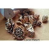~Coco Heart~ クリスマス にお勧め ゴールド 木の実 ミックス オリジナル商品 (X'mas、木の実・ドライフラワー・クリスマス)