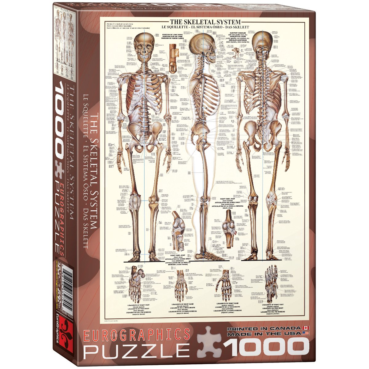 Eurographics 6000 3970 Puzzle Mehrfarbig Amazon Spielzeug