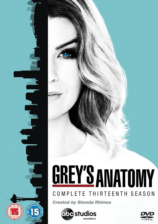 Grey\'s Anatomy - Season 13 [DVD]: Amazon.co.uk: Ellen Pompeo, Justin ...