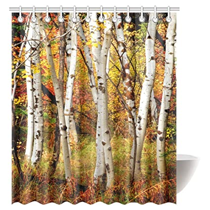 InterestPrint Fall Woodland Shower Curtain White Birch Trees With Autumn Leaves Growth Wilderness Ecology