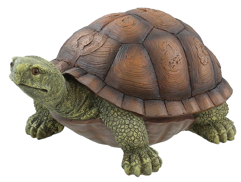 Amazon.com: Large Box Turtle Garden Decoration Collectible Tortoise ...
