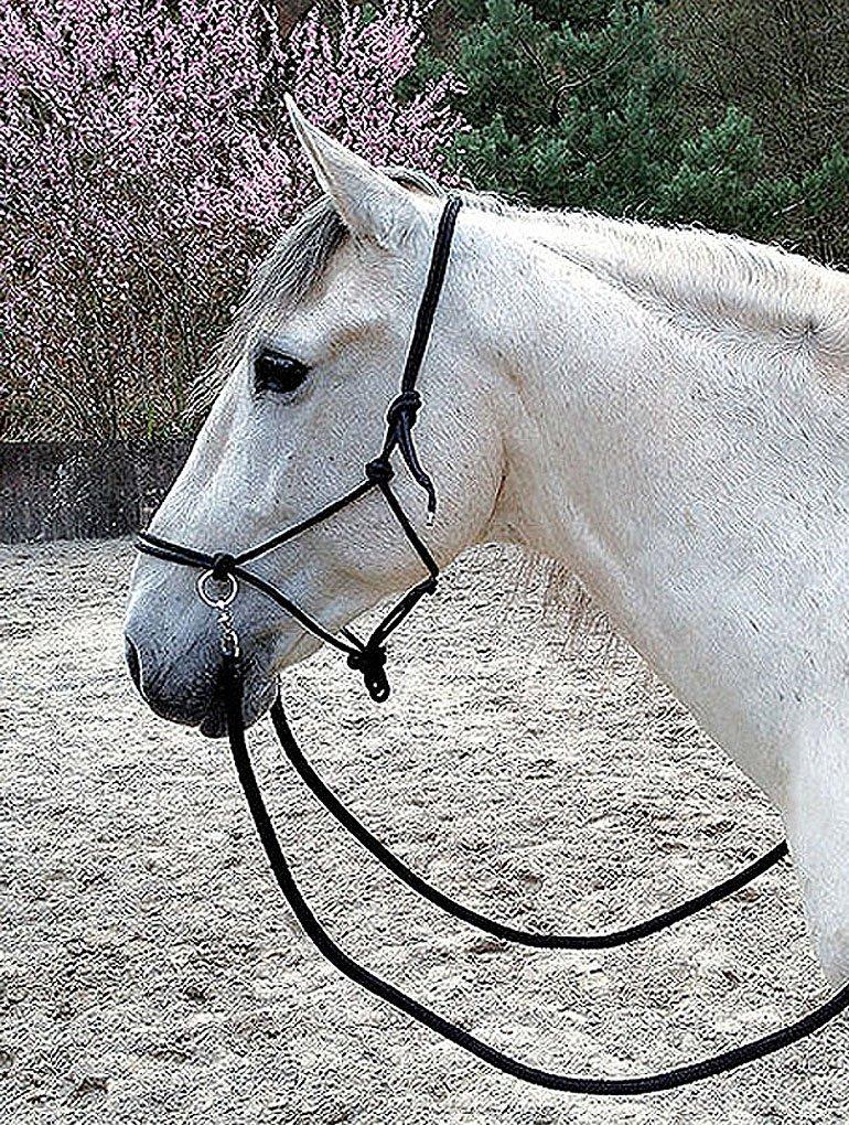 bitless Bodenarbeit Horsemanship Nodos cabezada con riendas Negro para formaci/ón Suelo Trabajo longieren o para Jinete  halfter gebisslos