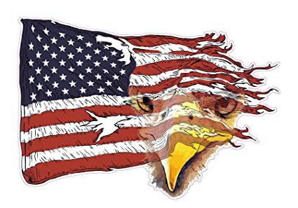 Amazon Com Weathered American Flag Eagle Decal 6 In The United