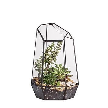 25cm Height Irregular Prism Glass Geometric Terrarium Tabletop Box Flower  Pot Planter Large Tall For Succulent