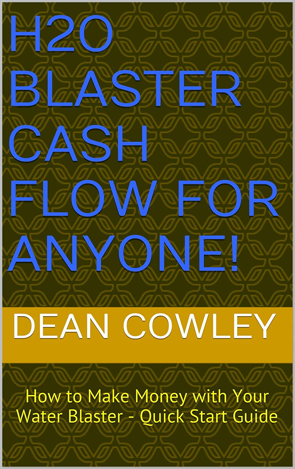 H2O Blaster Cash Flow for Anyone!: How to Make Money with Your ...