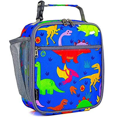 Kids Lunch box Insulated Soft Bag Mini Cooler Back to School Thermal Meal Tote Kit for Girls, Boys by FlowFly, dinosaur: Kitchen & Dining