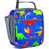 Kids Lunch box Insulated Soft Bag Mini Cooler Back to School Thermal Meal Tote Kit for Girls, Boys by FlowFly,dinosaur