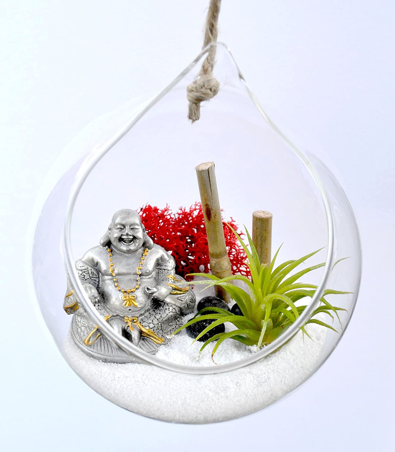 Pixie Glare Hanging Glass Terrarium Zen Garden Kit. With Pewter Buddha Figurine, Air Plant, Bamboo and More