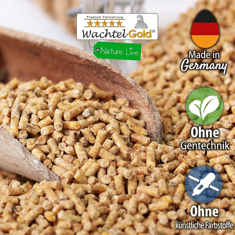 WachtelGold® alimentación de codornices ♥ │ 10kg, poner el grano naturaleza 2mm │ ✓ sin OGM │ Ideal para codornices │ Rico en linaza, semilla de chia y levadura de cerveza: Amazon.es: Productos para mascotas