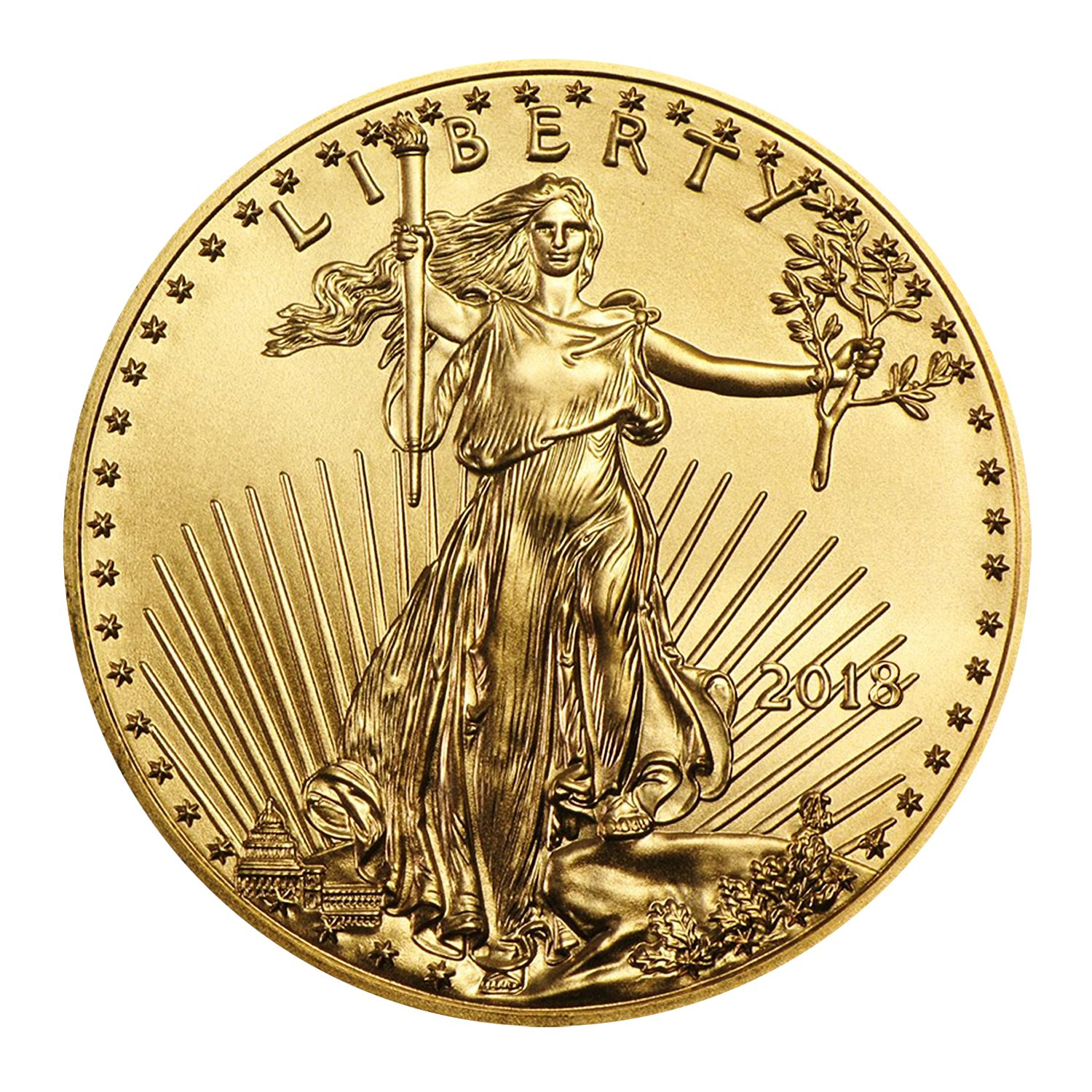 Supplies 1988-P American Gold Eagle 1//10 Ounce Proof COA ONLY NO COINS