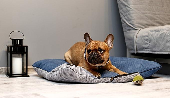 Lauren Diseño Frida Perros Cojín | Lavable | Cama para Perros | Dormir Espacio para Grande y pequeño Perro: Amazon.es: Productos para mascotas