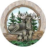 Thirstystone Stoneware Coaster Set, Big Sky Moose