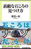 素敵な石ころの見つけ方 (中公新書ラクレ)