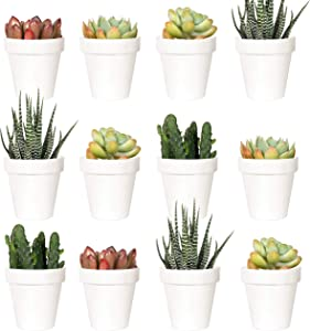 Youngever 24 Pack 2 Inch Mini Plastic Planters, Indoor Flower Plant Pots, White Gardening Pot with Drainage - NO Plant Included (Classic)