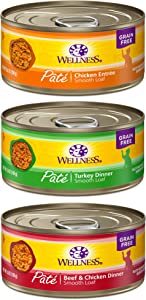 Wellness Complete Health Pate Cat Food Variety Bundle 5 Ounce - 3 Flavors (12 cans)