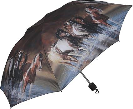 Amazon.com: Rivers Edge Products - Paraguas compacto ...